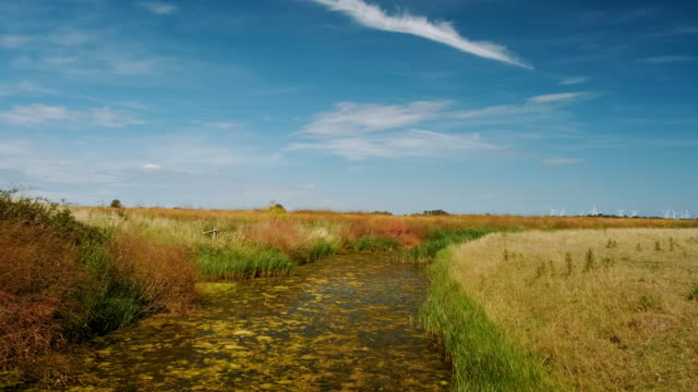 the floodplains in rye, east sussex, england, uk - south downs video stock e b–roll