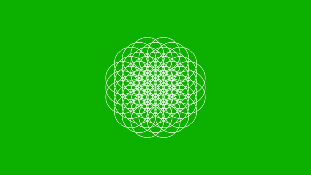 the flower of life forming on a green screen - мандала стоковые видео и кадры b-roll
