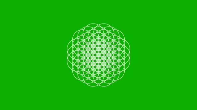 vídeos y material grabado en eventos de stock de la flor de la vida que se forma en una pantalla verde - mandala