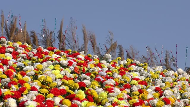 The flowerbed of white and red flowers and slow movement of wind