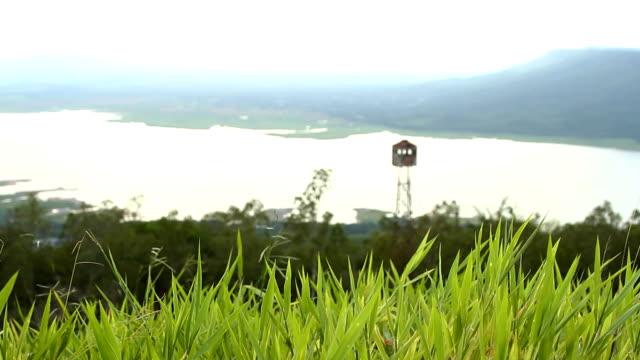 この要塞、ジャングルと川。 - 土手点の映像素材/bロール