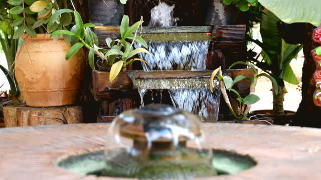 The fountain in the garden. video