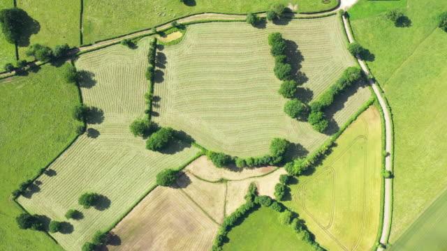 the french countryside, forests, fields and roads - francja filmów i materiałów b-roll