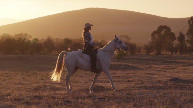 The fun doesn't end after dark 4k video footage of a young woman riding a horse on a ranch at sunset cowgirl stock videos & royalty-free footage