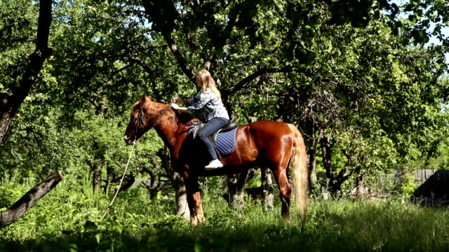 The girl riding a horse The girl riding a horse in an apple orchard, she caresses and petting the horse saddle stock videos & royalty-free footage