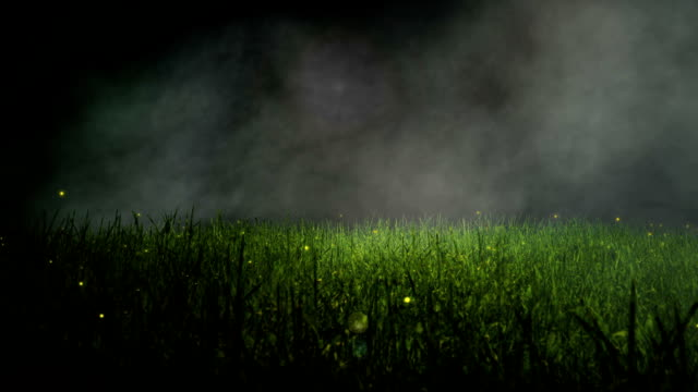 The Grass Animation video