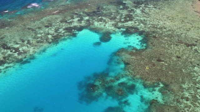 AERIAL: The Great Barrier Reef The beautiful landscape of Australia from above, see the the Great Barrier Reef outside Lizard Isand. reef stock videos & royalty-free footage