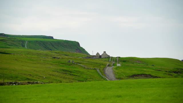 The green field on the mountain hill in Cliff of Moher in Ireland video