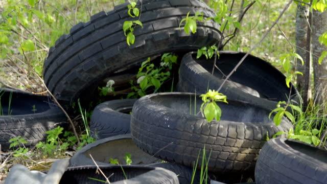 芝生の地面に古いタイヤのグループ ビデオ