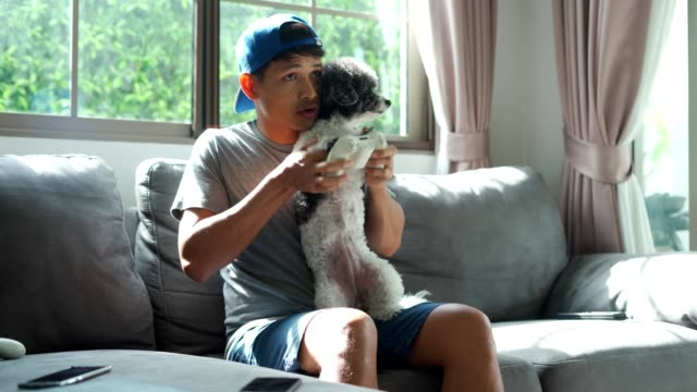 vídeos de stock e filmes b-roll de the guy sits at home and plays video games with his dog - man joystick