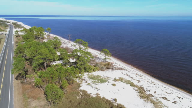 The highway along white sand dunes and pine forest on the Atlantic coast at Alligator Point, Panacea, North Florida. Aerial accelerated drone video with the cinematic wide-orbit, panoramic camera motion.