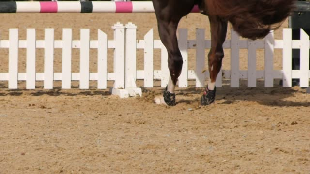 The horse jump over the obstacle Detail of the horse jump over the obstacle international match stock videos & royalty-free footage