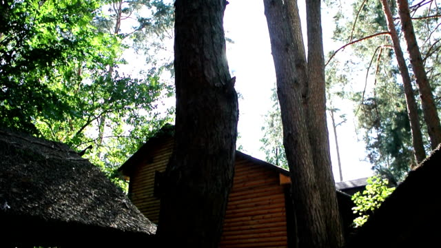 the house in the woods - blockhütte stock-videos und b-roll-filmmaterial