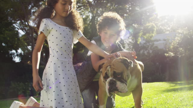 the kids of the family - bambino cane video stock e b–roll