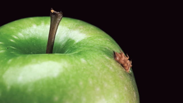 the larva feeds on a green Apple and chewed a hole in it,close-up the larva feeds on a green Apple and chewed a hole in it,close-up FullHD worm stock videos & royalty-free footage