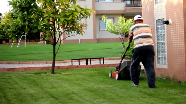The Lawn Mower Man video