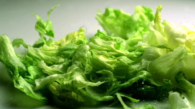 cadono le foglie di lattuga, rallentatore - lattuga video stock e b–roll