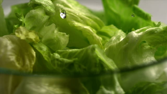 The lettuce salad and water, Slow Motion video