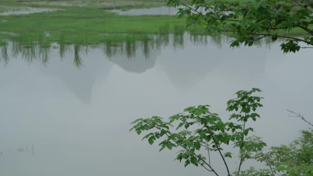 lijiang-fluss im regen - provinz guangxi stock-videos und b-roll-filmmaterial