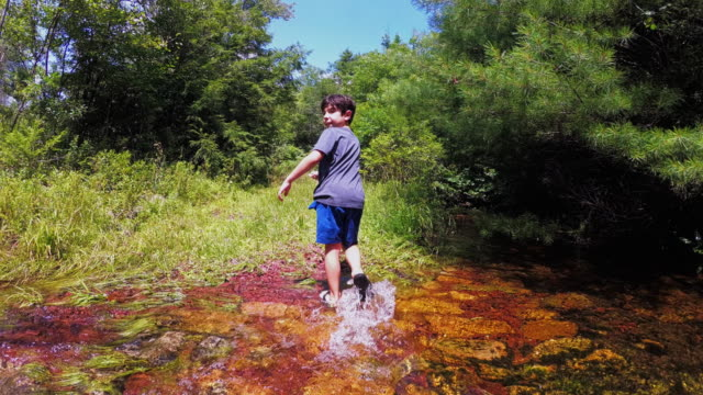 The little boy crossing the spring in the forest video