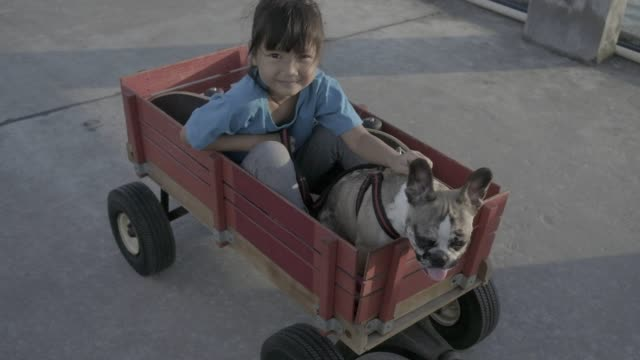 The little girl and the puppy sat red wooden wagon, with the older sister towing.