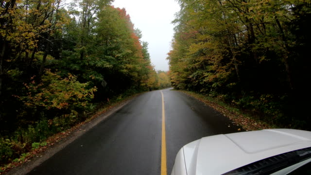 The Long Rural Autumn Road Corridor - video