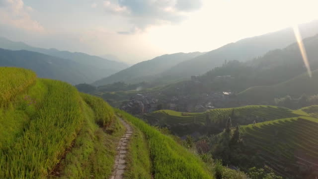 The Longji Rice Terraces video
