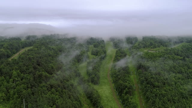 die tief hängenden wolken über berge in poconos, appalachian, pennsylvania, carbon county, usa. - pennsylvania stock-videos und b-roll-filmmaterial