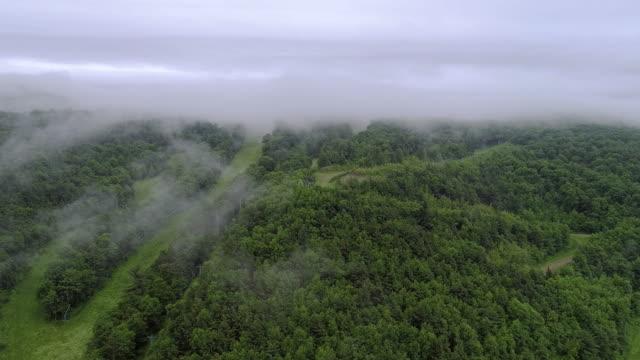 de låga moln över bergen i poconos, appalacherna, pennsylvania, carbon county, usa. - appalachia bildbanksvideor och videomaterial från bakom kulisserna