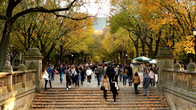 The Mall Central Park in New York City The Mall section of Central Park during autumn in New York City. central park manhattan stock videos & royalty-free footage