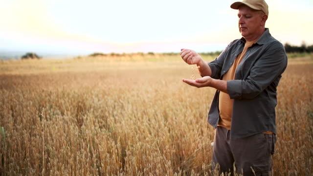The man controls the grain