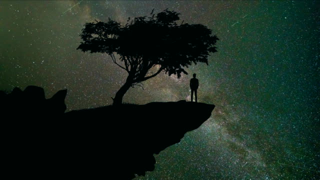 The man stand on the mountain near tree on the starry sky background. time lapse