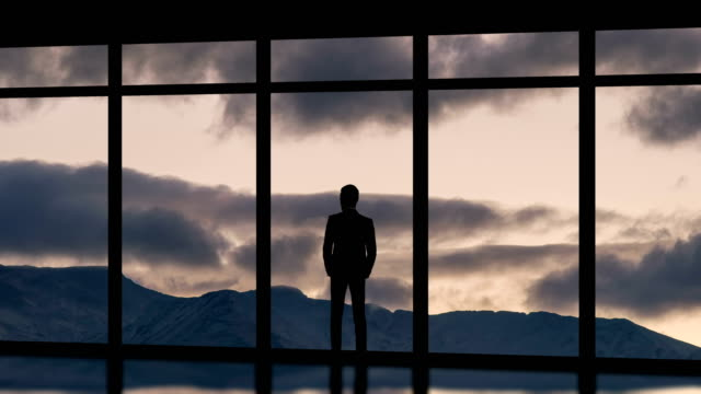 the man standing near panoramic windows on the cloud flow background. time lapse - man look sky scraper video stock e b–roll