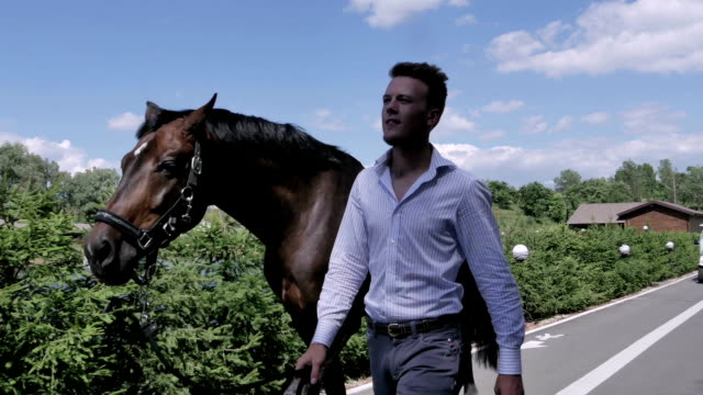 The man walking withe horse on the road video