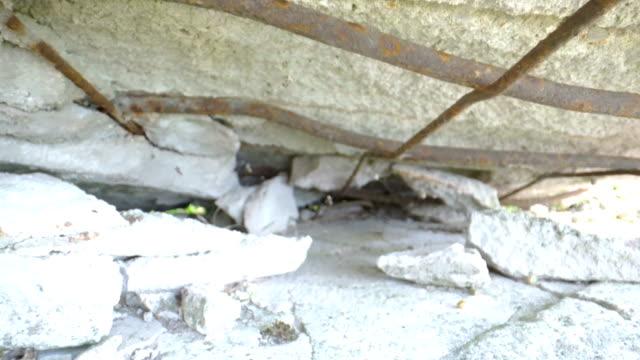 壊れたコンクリートの壁の中の金属棒 ビデオ