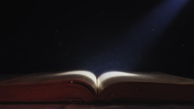 The moonlight falls down on the opened book.