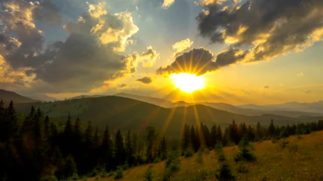 berg skogen på bakgrunden av solnedgången - städsegrön växt bildbanksvideor och videomaterial från bakom kulisserna