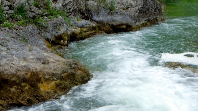 The mountain river in the spring video