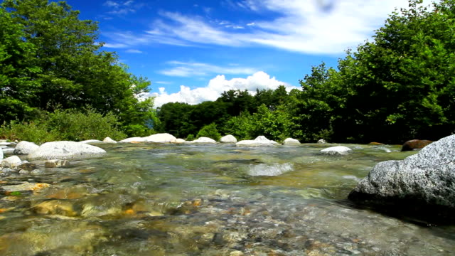The mountain river. video