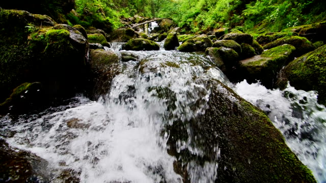The mountain stream flows downward with cascades video