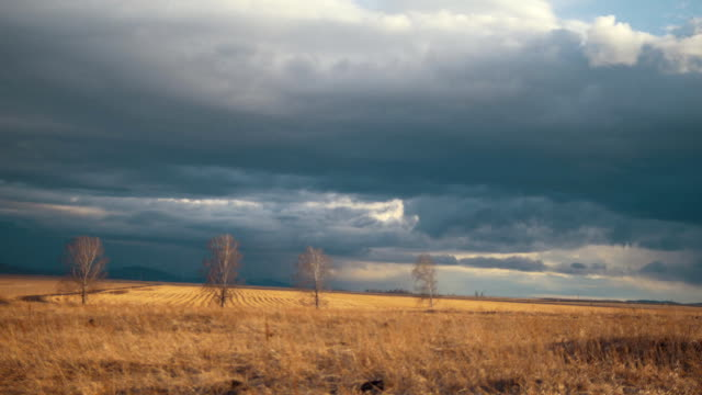 The movement of clouds in the spring field in cloudy weather, blurred video
