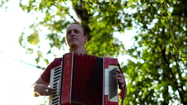 the musician plays the accordion video