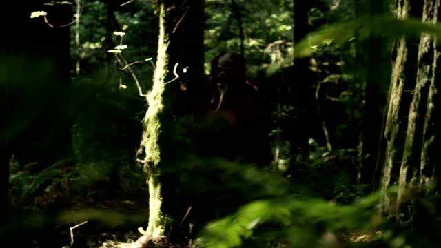 misteriosa creatura, bigfoot, cammina attraverso la fitta foresta verde. - yeti video stock e b–roll