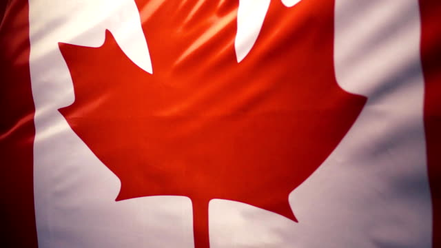 The national flag of Canada is swaying in the wind, slow mo