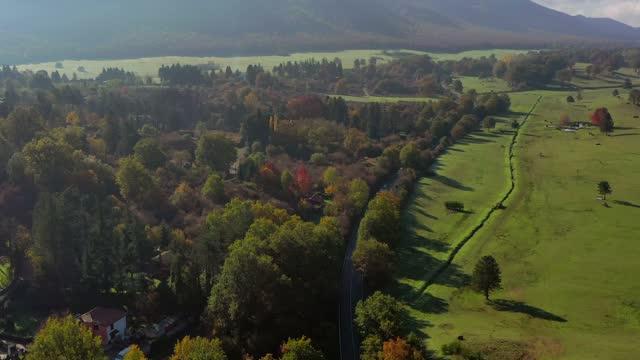 la riserva naturale di pratoni del vivaro nei castelli romani, italia - viaggio d'istruzione video stock e b–roll