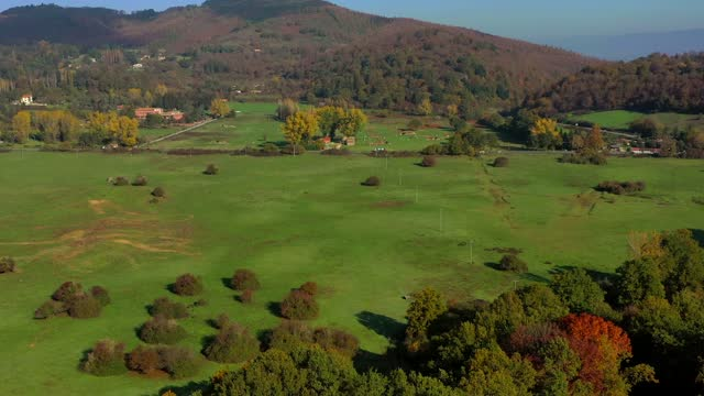 The natural reserve of Pratoni del Vivaro in the Castelli Romani, Italy