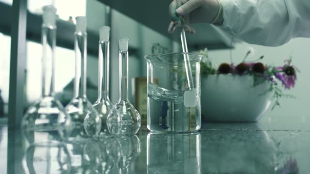 The pharmacist mixes the chemical extract Pharmacist mixes the chemical extract. Pharmacist works in the laboratory. There are chemical flasks and fresh Echinacea flowers on the table. stem research stock videos & royalty-free footage