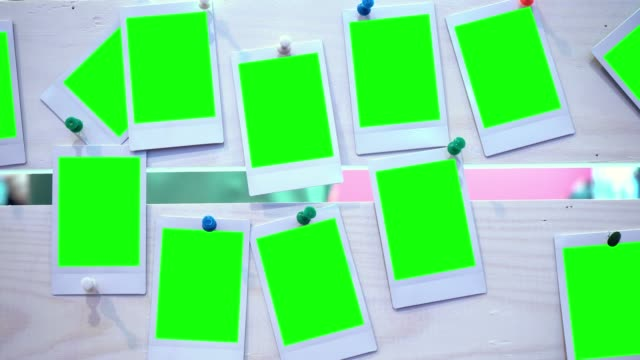 the photo. photo frame with green background - foto video stock e b–roll