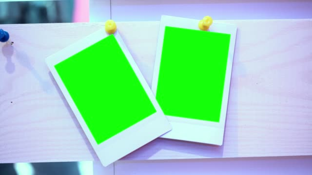 the photo. photo frame with green background - intelaiatura video stock e b–roll