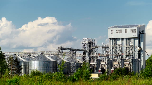 the plant of household chemicals with the metal tanks and pipes surrounded by forest. Timelapse video